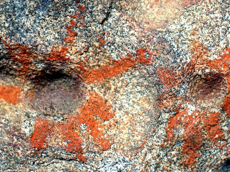 El Vallecito Rock Paintings