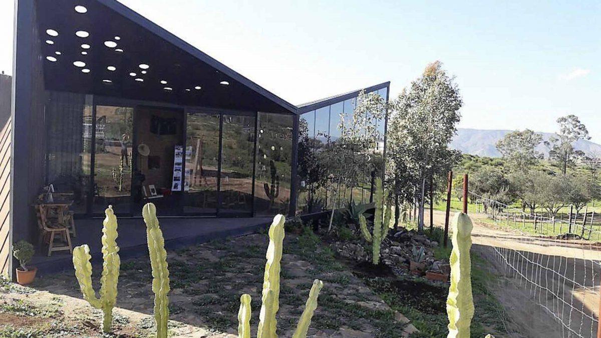 Media Perra Brewery, a Must-Visit Spot in Ensenada