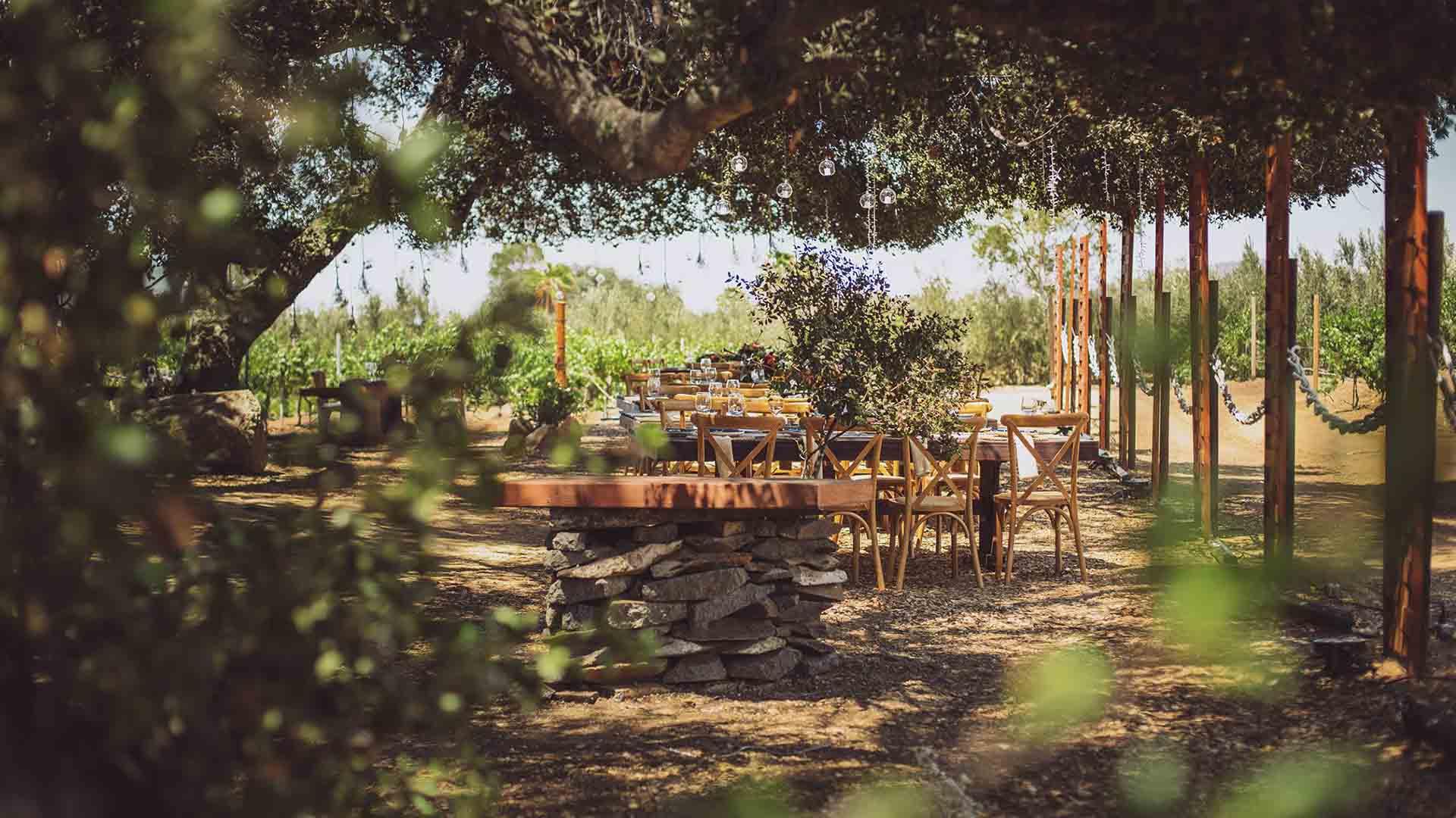 Top Five Breakfast Locales in Ensenada's Wine Route