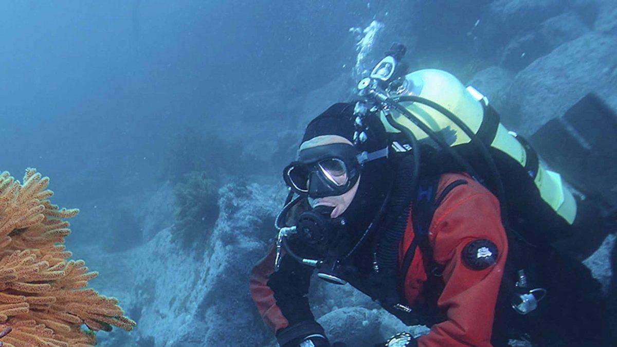 Diving, Baja California