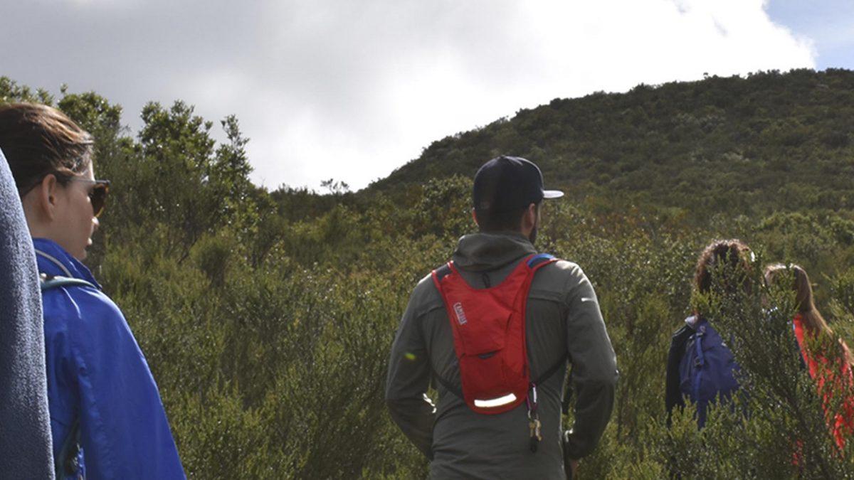 Hiking,, Baja California