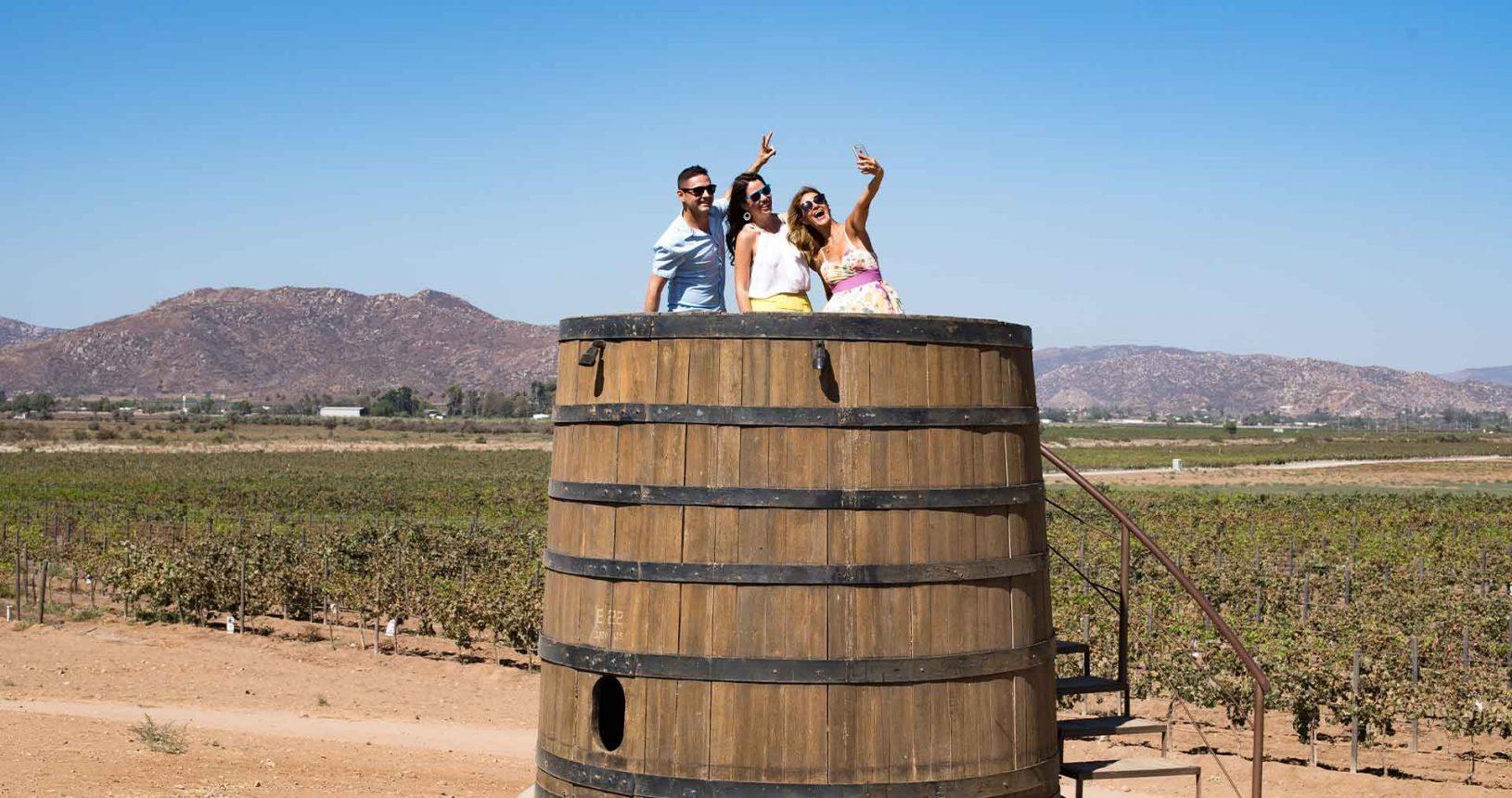 Baja California Wine country Valle de Guadalupe